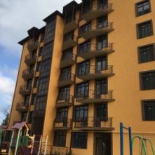 Вид дома и детской площадки